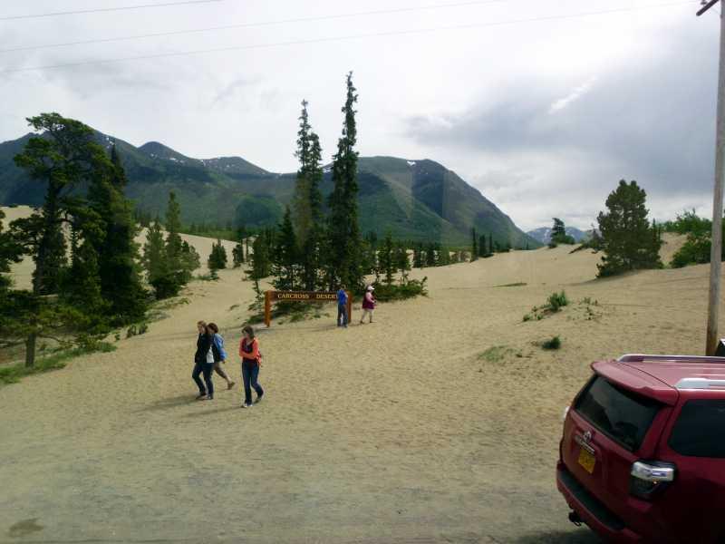Yukon desert