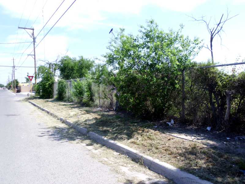 Del Rio neighborhood