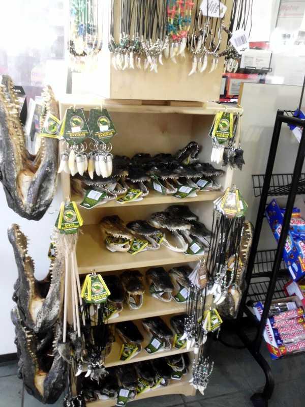 alligator souvenirs