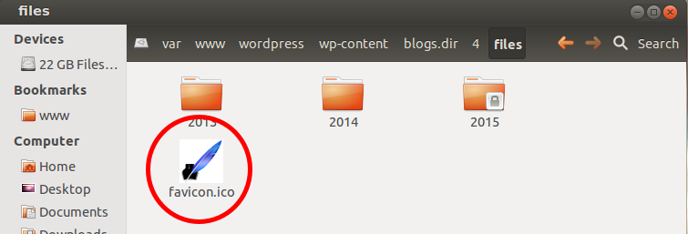 In this case, the directory is /var/www/wordpress/wp-content/blogs.dir/4/files